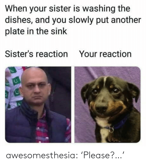 sink: When your sister is washing the  dishes, and you slowly put another  plate in the sink  Sister's reaction  Your reaction awesomesthesia:  'Please?…'