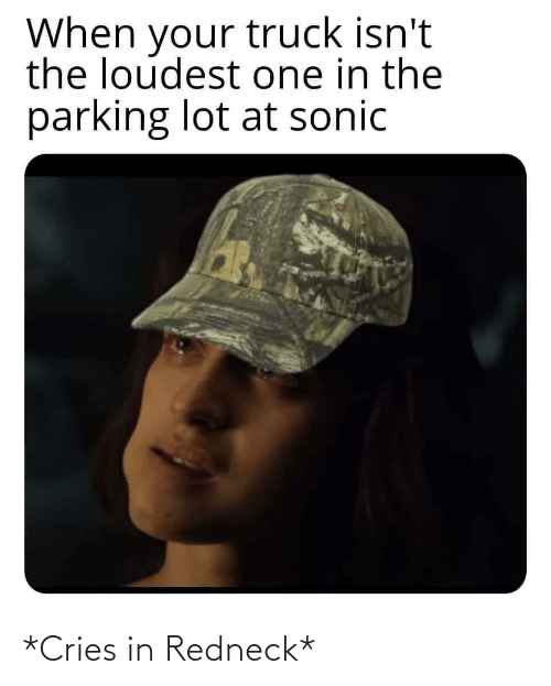 Sonic: When your truck isn't  the loudest one in the  parking lot at sonic *Cries in Redneck*