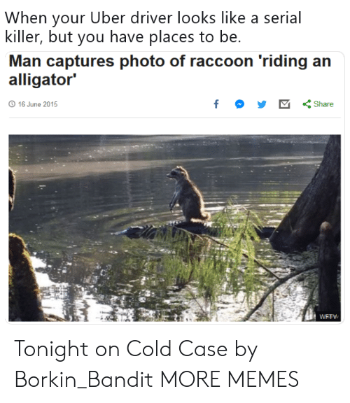 """Dank, Memes, and Target: When your Uber driver looks like a serial  killer, but you have places to be.  Man captures photo of raccoon 'riding an  alligator""""  16 June 2015 Tonight on Cold Case by Borkin_Bandit MORE MEMES"""