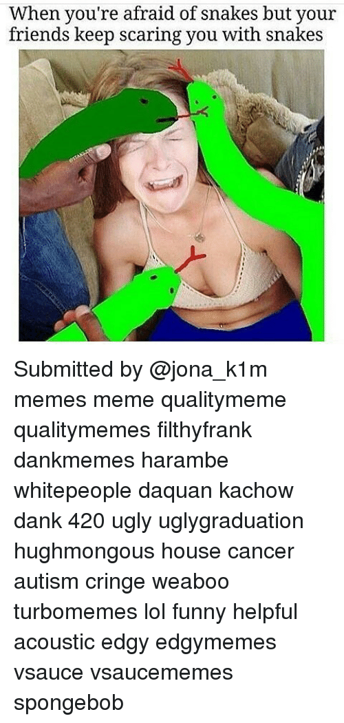 Harambism: When you're afraid of snakes but your  friends keep scaring you with snakes Submitted by @jona_k1m memes meme qualitymeme qualitymemes filthyfrank dankmemes harambe whitepeople daquan kachow dank 420 ugly uglygraduation hughmongous house cancer autism cringe weaboo turbomemes lol funny helpful acoustic edgy edgymemes vsauce vsaucememes spongebob