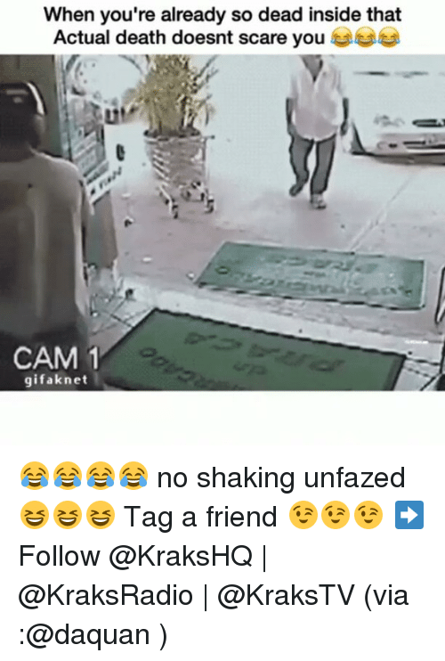 Daquan, Memes, and Scare: When you're already so dead inside that  Actual death doesnt scare you  CAM 1  gifaknet 😂😂😂😂 no shaking unfazed 😆😆😆 Tag a friend 😉😉😉 ➡️ Follow @KraksHQ | @KraksRadio | @KraksTV (via :@daquan )