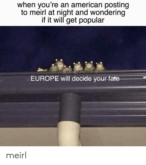 Fate: when you're an american posting  to meirl at night and wondering  if it will get popular  EUROPE will decide your fate meirl