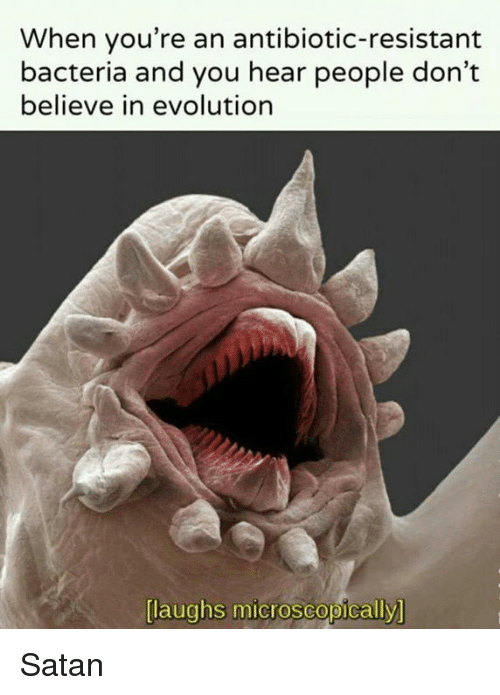 Laughs Microscopically: When you're an antibiotic-resistant  bacteria and you hear people don't  believe in evolution  laughs microscopically Satan