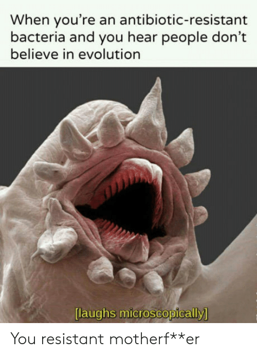 Laughs Microscopically: When you're an antibiotic-resistant  bacteria and you hear people don't  believe in evolution  laughs microscopically You resistant motherf**er