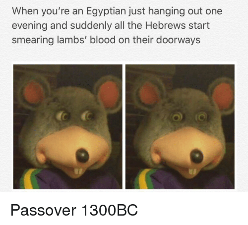 Egyptian, All The, and Blood: When you're an Egyptian just hanging out one  evening and suddenly all the Hebrews start  smearing lambs' blood on their doorways Passover 1300BC