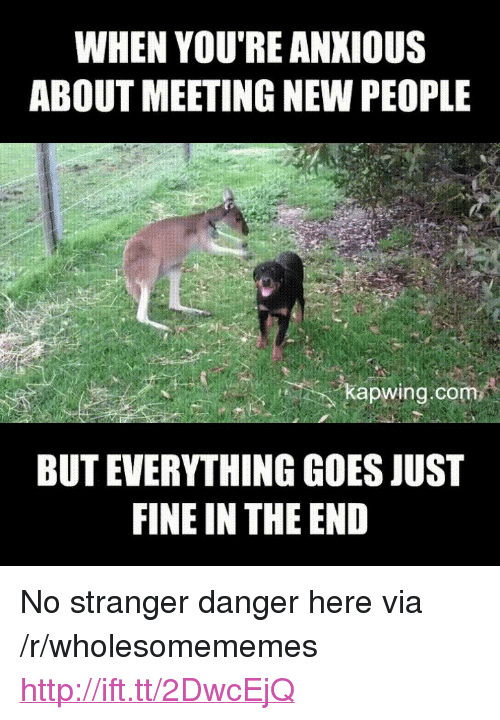 "Kapwing: WHEN YOU'RE ANKIOUS  ABOUT MEETING NEW PEOPLE  kapwing.com  BUT EVERYTHING GOES JUST  FINE IN THE END <p>No stranger danger here via /r/wholesomememes <a href=""http://ift.tt/2DwcEjQ"">http://ift.tt/2DwcEjQ</a></p>"