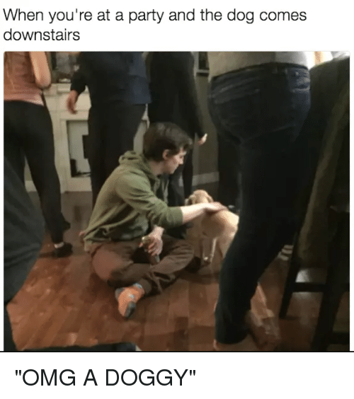 "Dank, Omg, and Party: When you're at a party and the dog comes  downstairs ""OMG A DOGGY"""