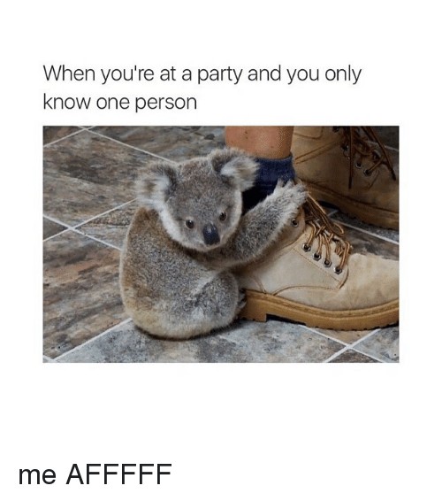 Party, Girl Memes, and One: When you're at a party and you only  know one person me AFFFFF