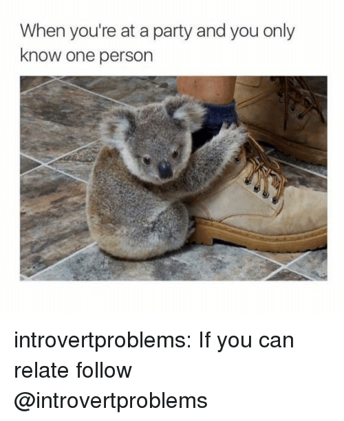 Party, Target, and Tumblr: When you're at a party and you only  know one person introvertproblems:  If you can relate follow @introvertproblems