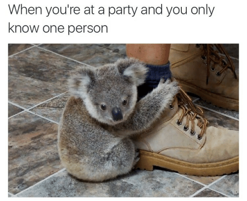Party, One, and You: When you're at a party and you only  know one person