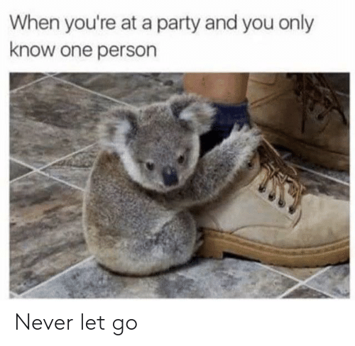 Party, Never, and One: When you're at a party and you only  know one person Never let go