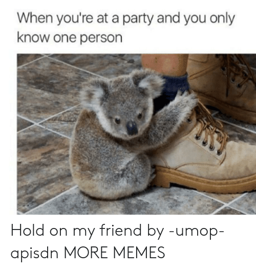 When Youre At A Party: When you're at a party and you only  know one person Hold on my friend by -umop-apisdn MORE MEMES