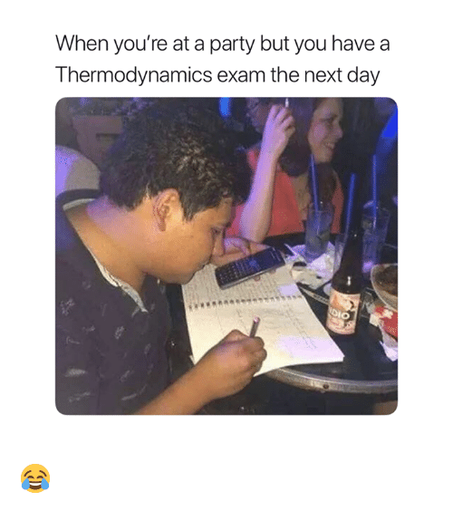 When Youre At A Party: When you're at a party but you have  Thermodynamics exam the next day  DIO 😂