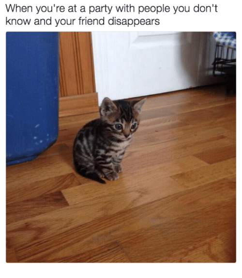 Memes, Party, and 🤖: When you're at a party with people you don't  know and your friend disappears