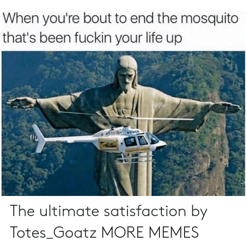 totes: When you're bout to end the mosquito  that's been fuckin your life up The ultimate satisfaction by Totes_Goatz MORE MEMES