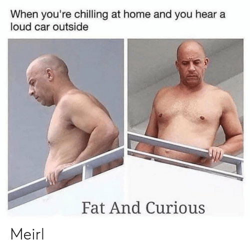 Home, Fat, and MeIRL: When you're chilling at home and you hear a  loud car outside  Fat And Curious Meirl