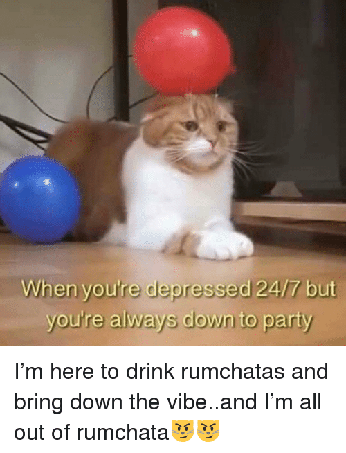 Funny, Party, and The Vibe: When you're depressed 24/7 but  you're always down to party I'm here to drink rumchatas and bring down the vibe..and I'm all out of rumchata😼😼