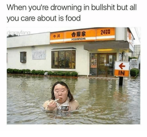 Bullshitted: When you're drowning in bullshit but all  you care about is food  drorayfa  牛丼 劍贫家 242
