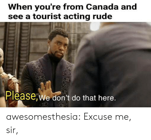 Tourist: When you're from Canada and  see a tourist acting rude  Please,We don't do that here. awesomesthesia:  Excuse me, sir,