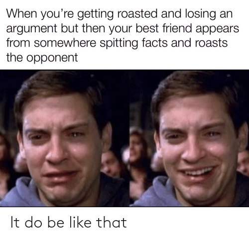 Getting Roasted: When you're getting roasted and losing an  argument but then your best friend appears  from somewhere spitting facts and roasts  the opponent It do be like that