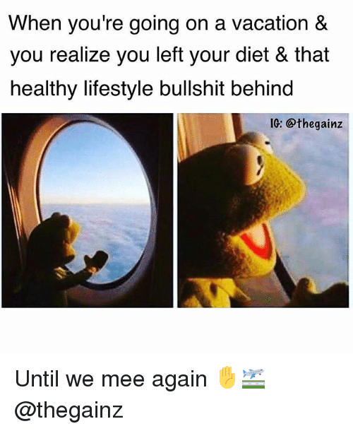 Bullshitted: When you're going on a vacation &  you realize you left your diet & that  healthy lifestyle bullshit behind  IG: @thegainz Until we mee again ✋🛫 @thegainz