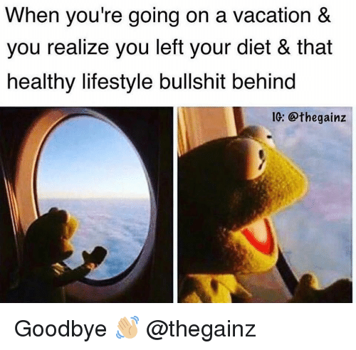 Gym, Lifestyle, and Vacation: When you're going on a vacation &  you realize you left your diet & that  healthy lifestyle bullshit behind  1: @thegainz Goodbye 👋🏼 @thegainz