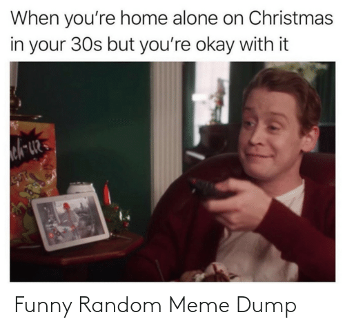 random: When you're home alone on Christmas  in your 30s but you're okay with it Funny Random Meme Dump