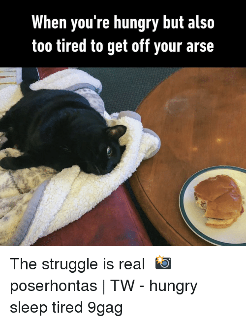 9gag, Hungry, and Memes: When you're hungry but also  too tired to get off your arse The struggle is real⠀ 📸 poserhontas | TW⠀ -⠀ hungry sleep tired 9gag