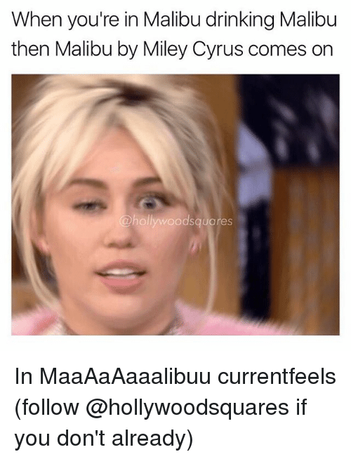 malibu: When you're in Malibu drinking Malibu  then Malibu by Miley Cyrus comes on  odsquares In MaaAaAaaalibuu currentfeels (follow @hollywoodsquares if you don't already)