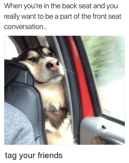 conversate: When you're in the back seat and you  really want to be a part of the front seat  conversation. tag your friends