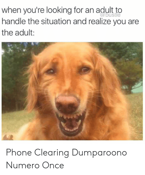 Phone, Looking, and Once: when you're looking for an adult to  handle the situation and realize you are  the adult: Phone Clearing Dumparoono Numero Once