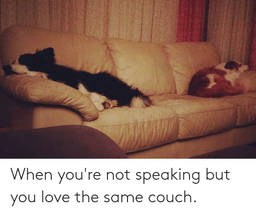 Couch: When you're not speaking but you love the same couch.
