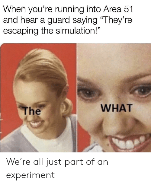 """experiment: When you're running into Area 51  and hear a guard saying """"They're  escaping the simulation!""""  WHAT  The We're all just part of an experiment"""