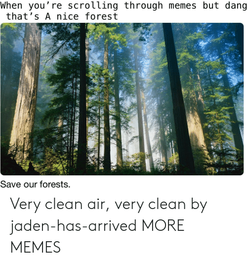Dank, Memes, and Target: When you're scrolling through memes but dang  that's A nice forest  Save our forests. Very clean air, very clean by jaden-has-arrived MORE MEMES