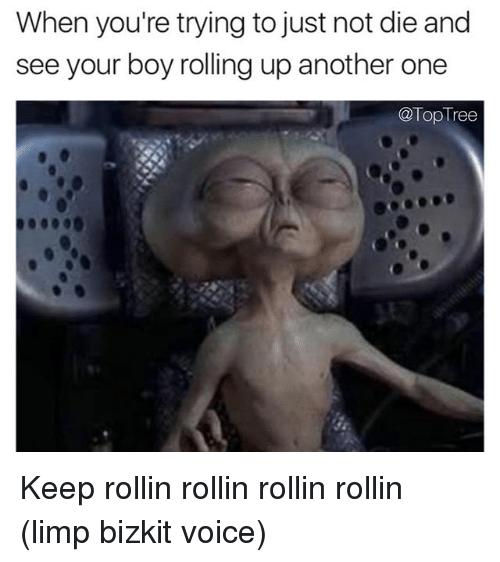 limp bizkit: When you're trying to just not die and  see your boy rolling up another one  @Top Tree Keep rollin rollin rollin rollin (limp bizkit voice)