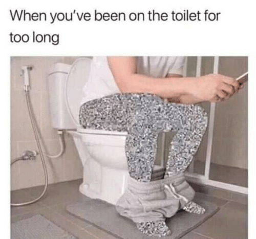Been, For, and Toilet: When you've been on the toilet for  too long