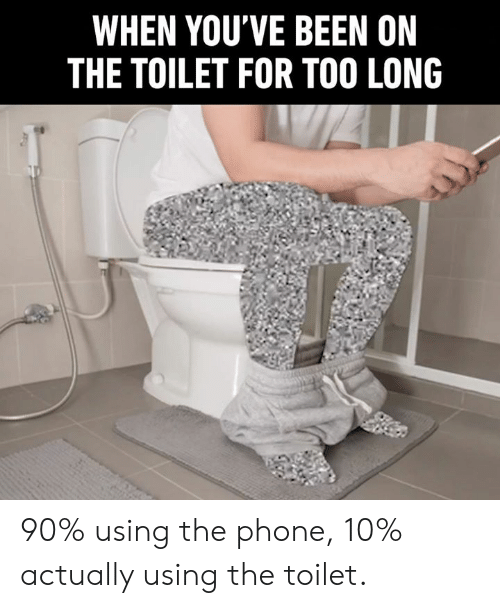 Dank, Phone, and Been: WHEN YOU'VE BEEN ON  THE TOILET FOR TOO LONG 90% using the phone, 10% actually using the toilet.