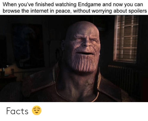 Facts, Internet, and Dank Memes: When you've finished watching Endgame and now you can  browse the internet in peace, without worrying about spoilers Facts 😌