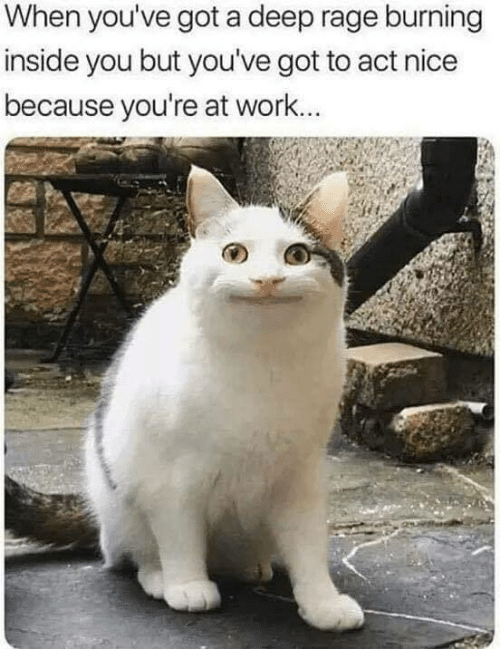 Work, Nice, and Got: When you've got a deep rage burning  inside you but you've got to act nice  because you're at work...