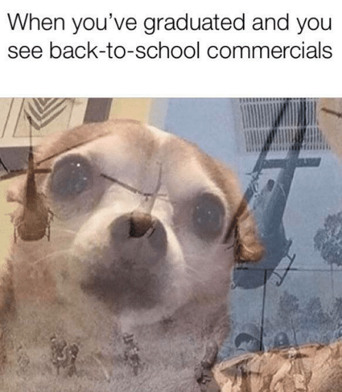 Memes, School, and Back: When you've graduated and you  see back-to-school commercials
