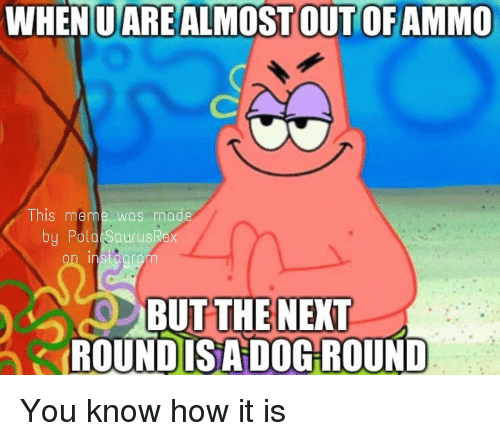 Polo: WHENUAREALMOST OUT OFAMMO  Ihis meme was made  by Polo SaurusRe  on instaoram  BUT THE NEXT  ROUNDISA DOG ROUND You know how it is