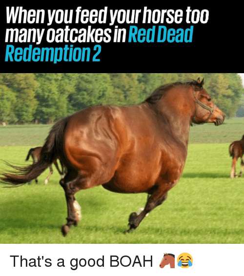 Memes, Good, and 🤖: Whenyou feed yourhorse too  many oatcakes in Red Dead  Redemption2 That's a good BOAH 🐴😂