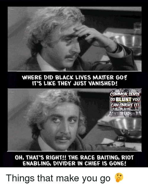 Black Live Matter: WHERE DID BLACK LIVES MATTER GO?  IT'S LIKE THEY JUST VANISHED!  COMMON SENSE  BLUNT YOU  CAN SMOKE IT!  TREADONYS  OH, THAT'S RIGHT!! THE RACE BAITING, RIOT  ENABLING, DIVIDER IN CHIEF IS GONE! Things that make you go 🤔