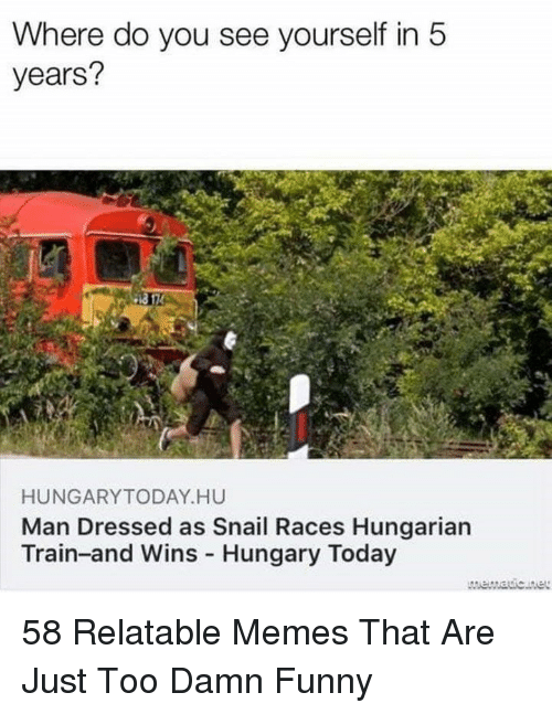 Funny, Memes, and Today: Where do you see yourself in5  years?  HUNGARYTODAY HU  Man Dressed as Snail Races Hungarian  Train-and Wins Hungary Today 58 Relatable Memes That Are Just Too Damn Funny