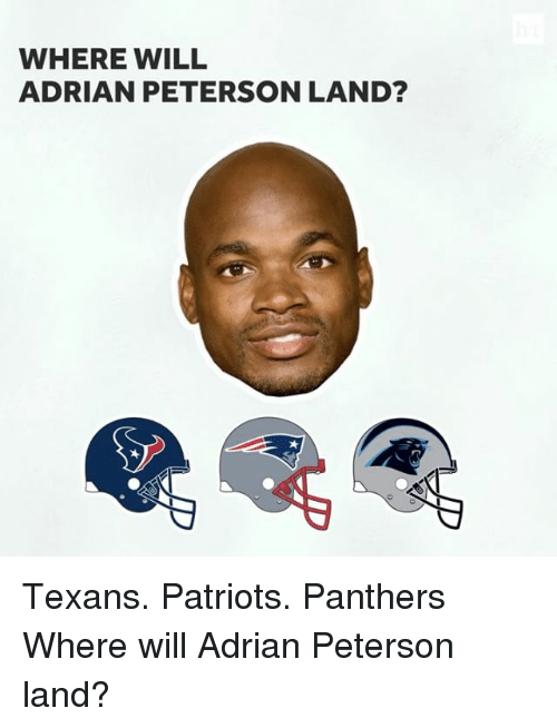 Adrian Peterson, Sports, and  Adrian: WHERE WILL  ADRIAN PETERSON LAND? Texans. Patriots. Panthers Where will Adrian Peterson land?