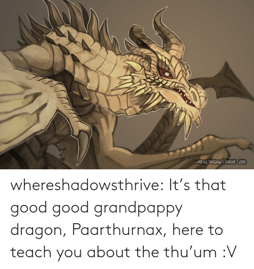 Thu: WHERESHADOWS THRIVE 2018 whereshadowsthrive:  It's that good good grandpappy dragon, Paarthurnax, here to teach you about the thu'um :V