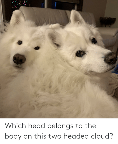 Head, Cloud, and This: Which head belongs to the body on this two headed cloud?