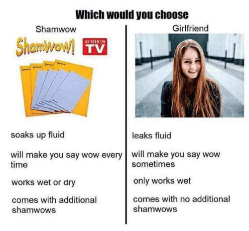 Wow, Time, and Girlfriend: Which would you choose  Shamwow  Girlfriend  AS SEEN ON  TV  soaks up fluid  leaks fluid  will make you say wow every will make you say wow  time  works wet or dry  comes with additional  sometimes  only works wet  comes with no additional  shamwows  shamwows