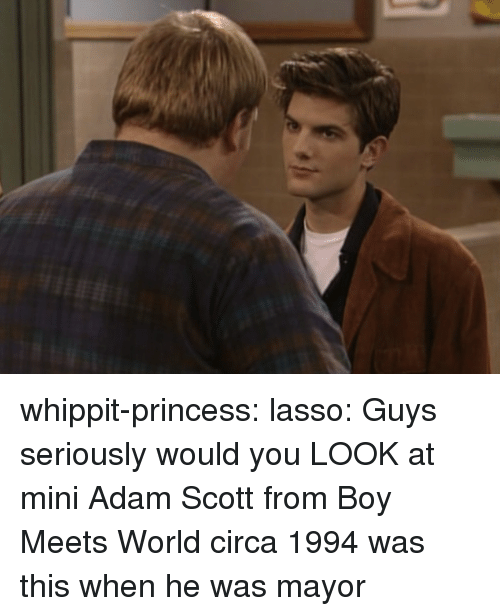 Adam Scott: whippit-princess:  lasso:    Guys seriously would you LOOK at mini Adam Scott from Boy Meets World circa 1994    was this when he was mayor
