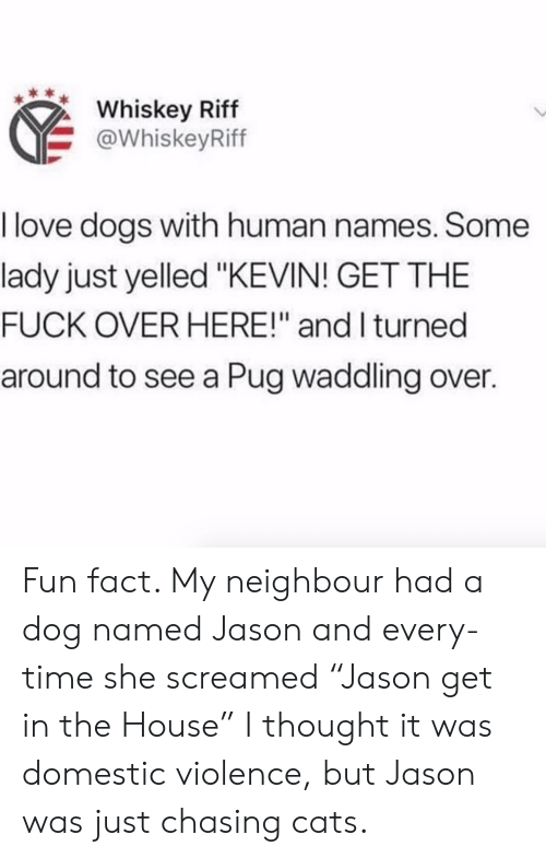 """Cats, Dogs, and Love: Whiskey Riff  @WhiskeyRiff  I love dogs with human names. Some  lady just yelled """"KEVIN! GET THE  FUCK OVER HERE!"""" and I turned  around to see a Pug waddling over. Fun fact. My neighbour had a dog named Jason and every-time she screamed """"Jason get in the House"""" I thought it was domestic violence, but Jason was just chasing cats."""